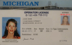 michigan drivers license suspension appeal